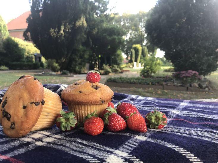 Picknickdecke mit Erdbeeren und Kuchen. Im Hintergrund Büsche, Weg und Haus.