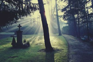 Friedhof in diffusem Licht - Copyright: Pixabay cemetery-883417_1920