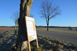 Man sieht eine Straße in der Landschaft. Im Vordergrund lehnt ein Aufsteller mit Texten an einem Baum - Copyright: Stephan Krtschil