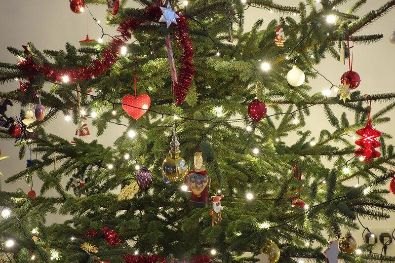 Die Kirchengemeinden Mustin und Seedorf laden zum lebendigen Adventskalender ein.