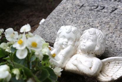 Oberkörper zweier Engel aus weißem Stein lehnen vor einem halb liegendem Grabstein. Vor den Engeln sind weiße Blüten zu sehen.