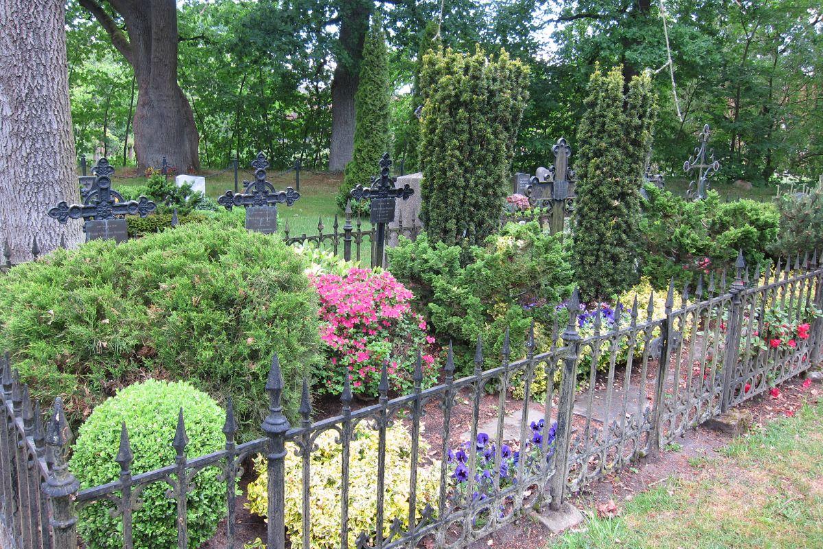 Ältere angelegte Gräber, üppig bewachsen